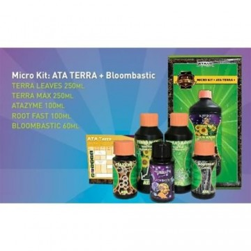 Ata Terra Bloombastic Box