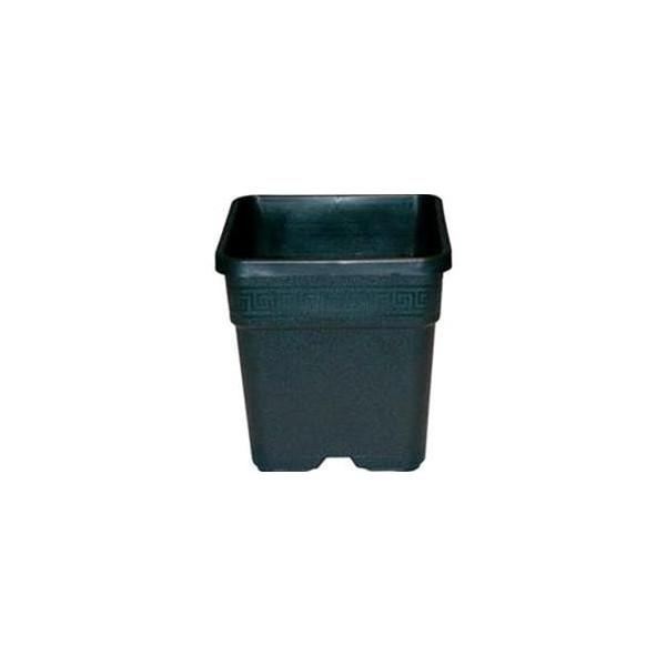 Vaso Quadrato 6,5 L 21x21x21,6 in plastica resistente